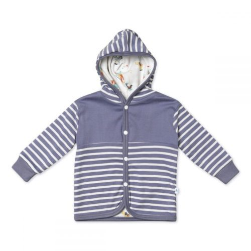 Organic Cotton Hoody, Stripe pattern, Boys